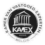 kavex logo